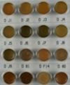 Picture of Dermacolor Mini Palette BRX1-14gm