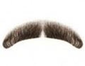 Picture of Hairaisers MD Mercury Moustache