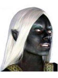 Picture of Maskworld Dark Elves