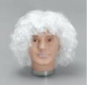 Picture of Santa Wavy Budget Wig - 019
