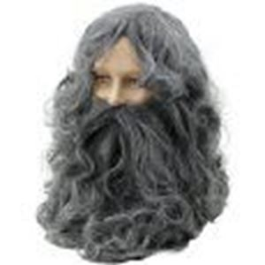 Picture of Moses Wig & Beard - BW573