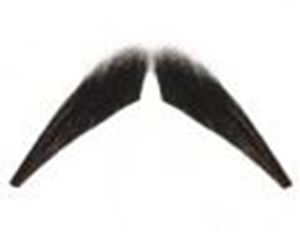 Picture of Hairaisers Wyatt Earp Moustache