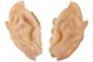 Picture of Grimas - Elf Ears